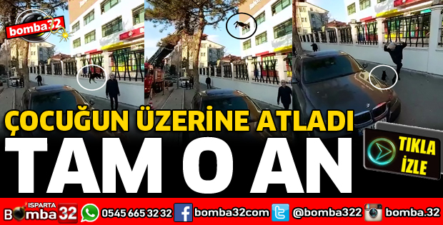 AĞAÇTAN ÇOCUĞUN ÜZERİNE KEDİ ATLADI!