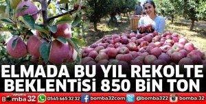 ELMADA BU YIL REKOLTE BEKLENTİSİ 850 BİN TON